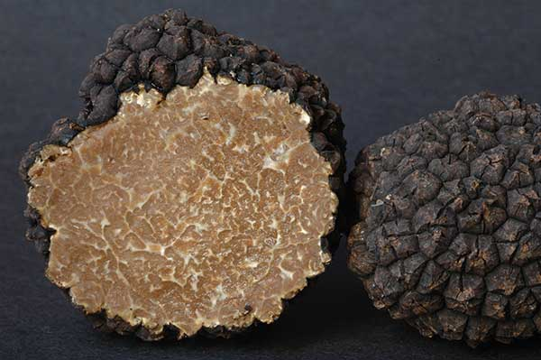 Image of sliced Burgundy, or Summer, truffles (Tuber aestivum var. uncinatum)